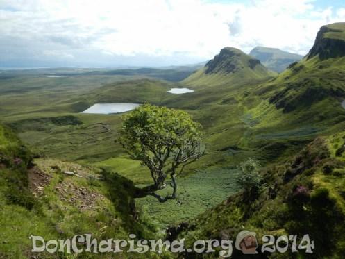 scotland-highlands-tree-pixabay-230255-DonCharisma.org-1024LE