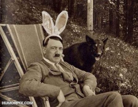 adolf-funny-rabbit-ears1