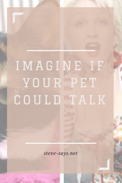Imagine if your pet could talk