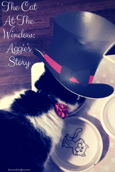 The Cat At The Window: Aggie's Story