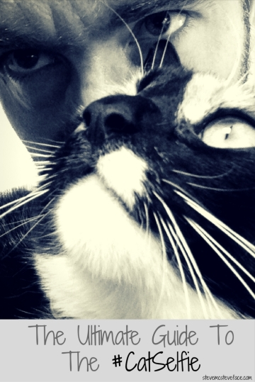 Steve McSteveface's Ultimate Guide To Cat Selfies!