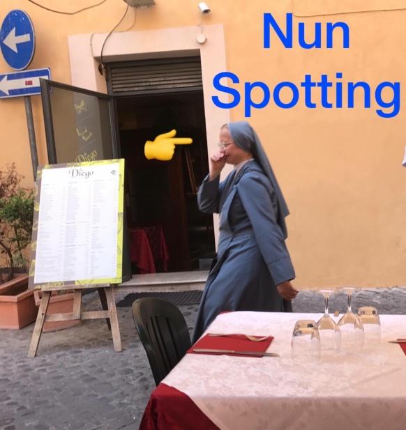 NunSpotting