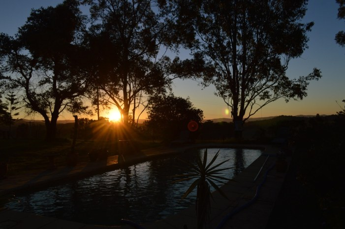 BEAUTIFUL AUSTRALIA: A Perfect Travel Destination for Wine Lovers